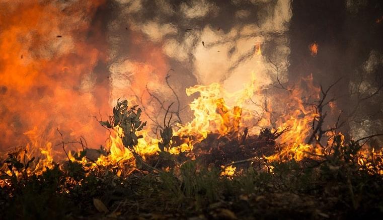 La Rioja en llamas