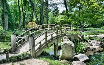 Incluya la protección de su jardín en el seguro de hogar